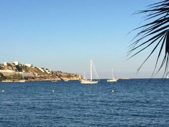 Baanonzekerheid, Ibiza, vrijjheid, keuze, ww, ontslag